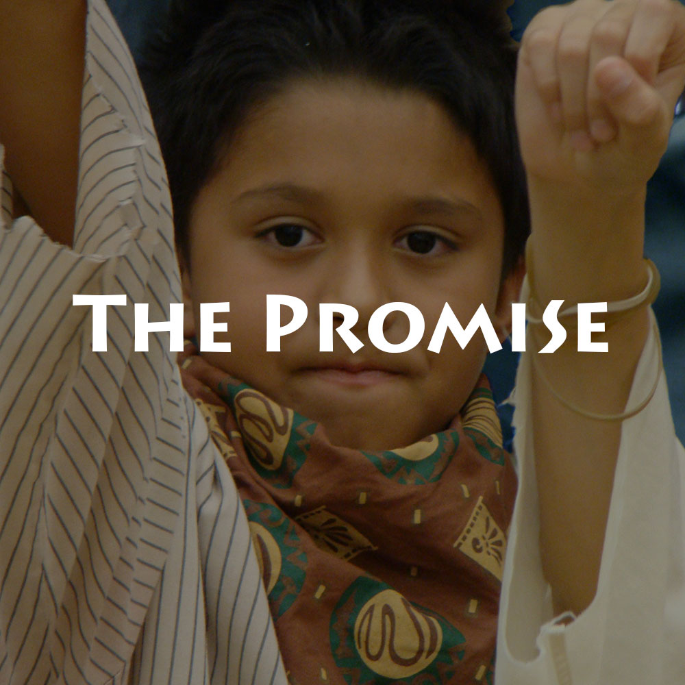 web-the-promise